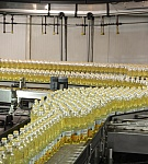 Iskon ulje - proveren kvalitet u novoj ambalaži